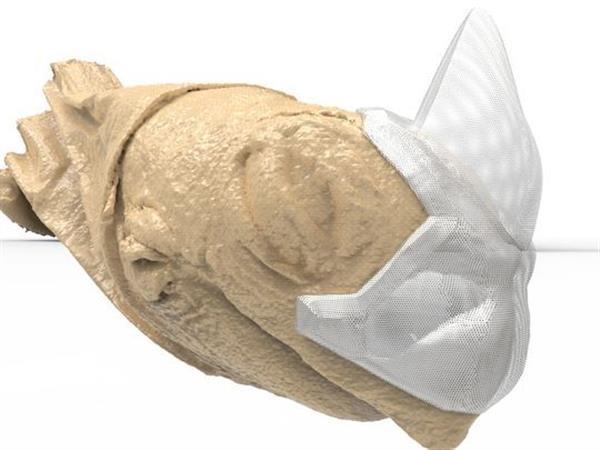 Zoo Knoxville черепаха которая носит крошечную трехмерную печатную маску для защиты морды от травм